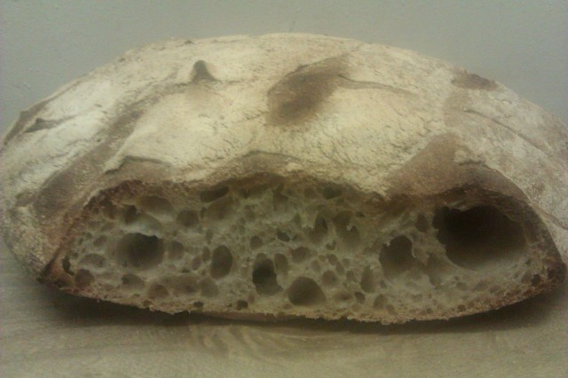 """""""A flattish loaf sliced so the holes and texture can be seen"""""""